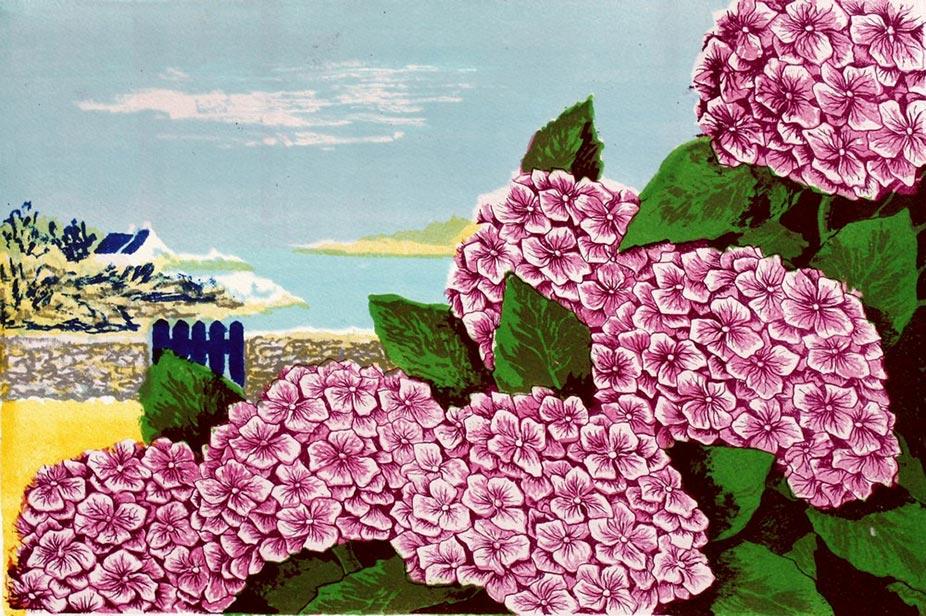 Hortensias roses Lithographie 30x46 © Daniel GIRAULT